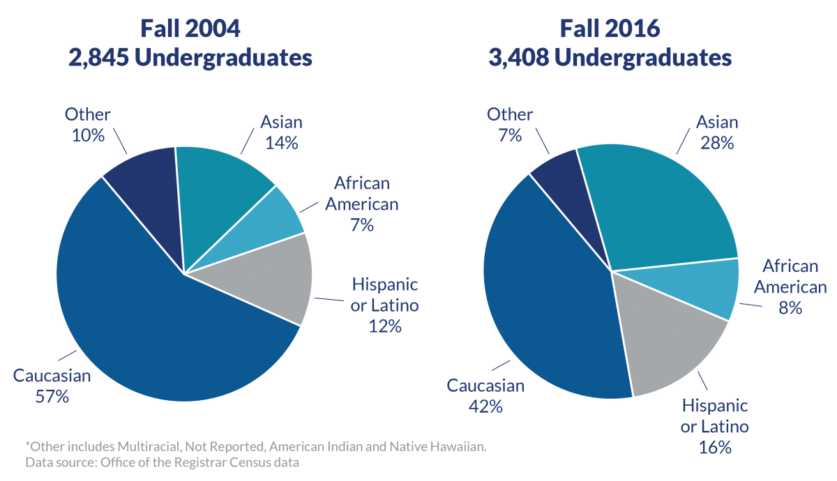 Undergraduate diversity has increased: Degree-seeking domestic students